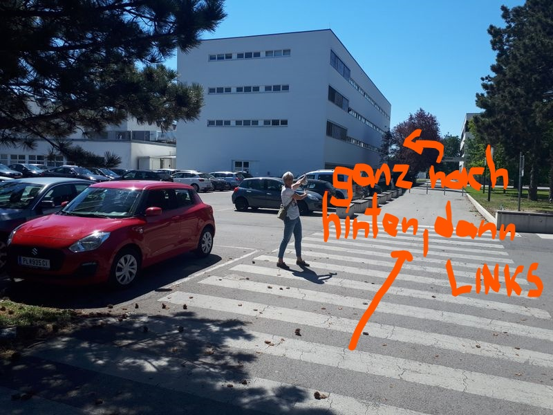 Es darf auf gar keinen Fall zu einer Vermischung von Leistungssportlern und Babyschwimmern kommen. Daher bitte nicht durch den Haupteingang (auch wenn er offen sein sollte!) und nicht durch das Bundessportzentrum gehen! Zugang bitte ausschließlich wie folgt: Vom großen Parkplatz auf dem Weg Richtung Haupteingang (Weg zwischen Liese Prokop Privatschule und BSFZ-Südstadt) gehen – AM […]
